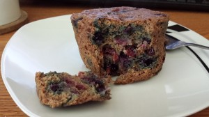 Paleo Blueberry Mug Muffin